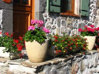 Jardins fleuris_4