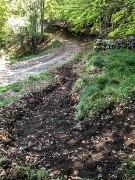 Sentier des Pergeyres_2