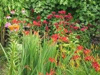 Concours maisons et jardins fleuris