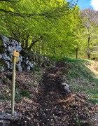 Sentier des Pergeyres_3