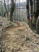 Sentier entre Vieux-Mayres et Montlaur_7